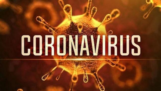Virus Corona là gì?